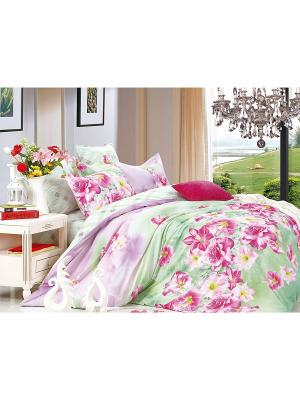 Комплект постельного белья 2 сп. сатин, рисунок 687 LA NOCHE DEL AMOR. Цвет: салатовый