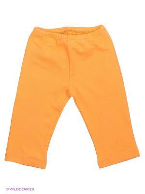 Штаны прямые Goldy. Цвет: оранжевый