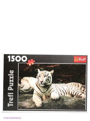 Пазл  Бенгальские тигры Trefl. Цвет: белый, черный