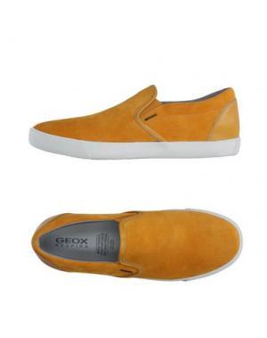 Низкие кеды и кроссовки GEOX. Цвет: желтый