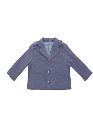Пиджак ЗВ04.39.1 Fleole. Цвет: синий, серый