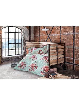 Комплект постельного белья FLORET, ранфорс, 145ТС, 100% хлопок, евро ISSIMO Home. Цвет: голубой