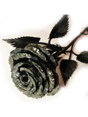 Роза Chic a loco. Цвет: черный, антрацитовый, темно-серый