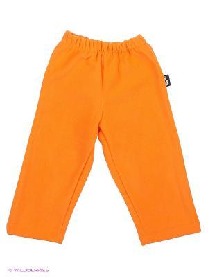Штаны Радуга ЛисФлис. Цвет: оранжевый