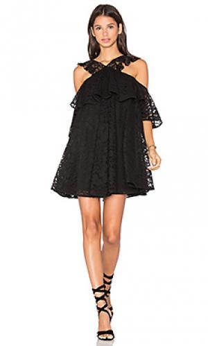 Кружевное мини платье с открытыми плечами Cynthia Rowley. Цвет: черный