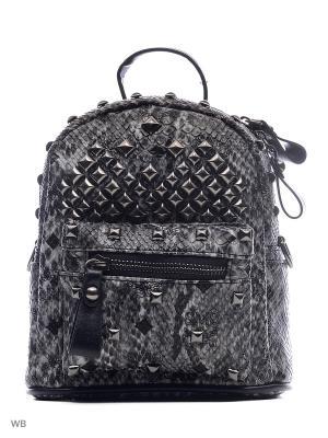 Рюкзак Vitacci. Цвет: серый, черный