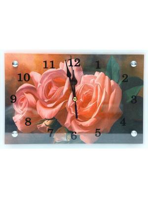 Настенные часы Розовые розы 20х30 В748 PROFFI. Цвет: розовый