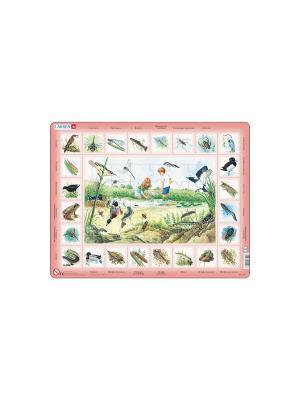 Пазл Пруд (Русский) LARSEN AS. Цвет: бежевый, бледно-розовый