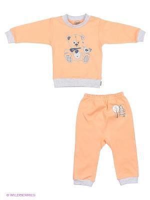 Комплект одежды Лео. Цвет: персиковый
