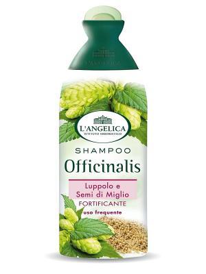 Шампунь УКРЕПЛЯЮЩИЙ для частого использования с экстрактом хмеля и просо 250 мл L'Angelica. Цвет: белый