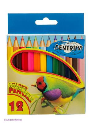 Цветные карандаши 12 цветов короткие Centrum. Цвет: зеленый