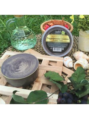 Гидрофильная плитка Голубика с Оливой, 150 гр Grosheff. Цвет: фиолетовый