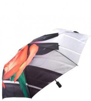 Автоматический зонт с уникальным каркасом из анодированной стали FLIORAJ. Цвет: мультиколор