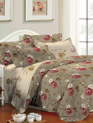 Комплект постельного белья евро Ля Мур. Цвет: коричневый