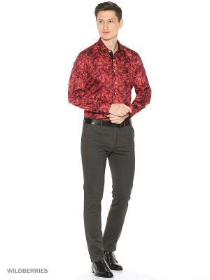 Рубашка Alex DANDY. Цвет: бордовый