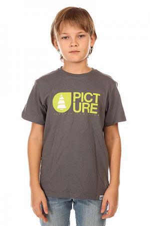 Футболка детская  Basement Grey Picture Organic. Цвет: серый