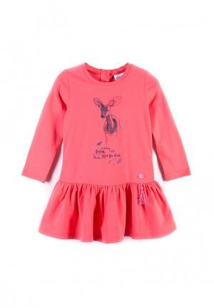 Платье Coccodrillo. Цвет: коралловый