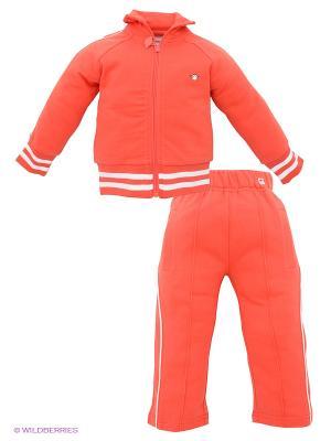 Спортивный костюм Appaman. Цвет: красный