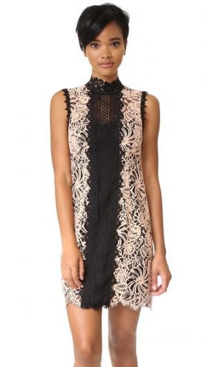Свободное платье Paramour Nanette Lepore. Цвет: роза пустыни