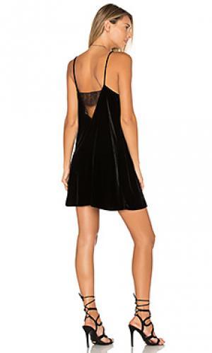 Бархатное платье с кружевной вставкой на спине CAMI NYC. Цвет: черный