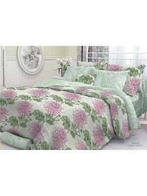Комплект постельного белья 2,0-сп, VEROSSA,  наволочки 50*70см, Weed Verossa. Цвет: зеленый, лиловый, светло-зеленый