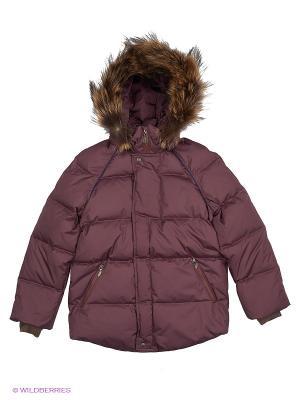 Куртка Андрей Аксарт. Цвет: темно-бордовый