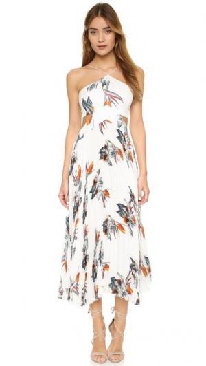 Платье Camille Elle Sasson. Цвет: цветочный принт paradise цвета слоновой кости