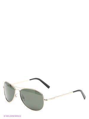 Солнцезащитные очки Polaroid. Цвет: золотистый, серо-зеленый
