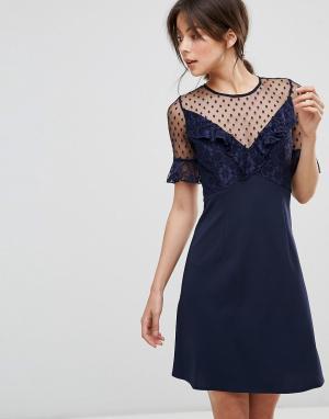 Elise Ryan Платье мини с кружевом и расклешенными рукавами. Цвет: темно-синий