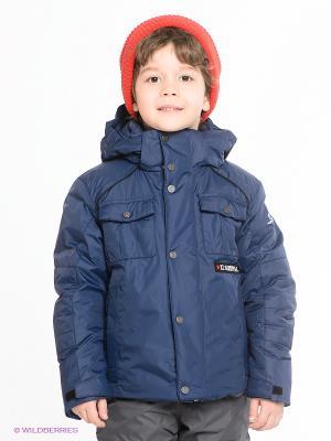 Куртка CACAO. Цвет: темно-синий