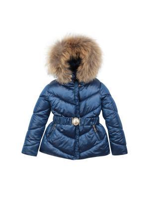 Куртка Pulka. Цвет: синий