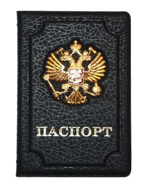 Обложка на паспорт Lola. Цвет: черный, золотистый