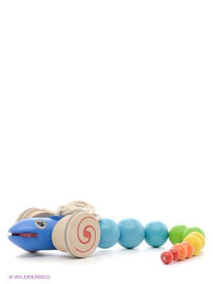 Каталка Змейка PLAN TOYS. Цвет: голубой