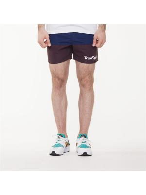 Шорты TRUESPIN Core Shorts True Spin. Цвет: синий, сливовый