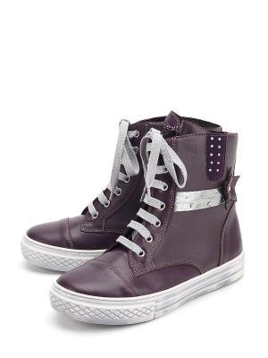 Ботинки PAVLE. Цвет: фиолетовый