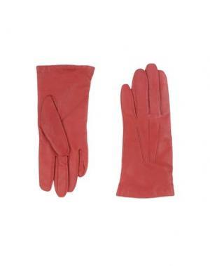 Перчатки DENTS. Цвет: красный