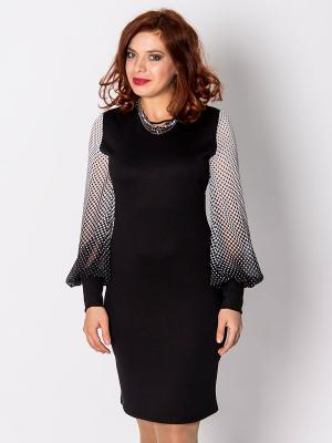 Платье Lautus. Цвет: черный
