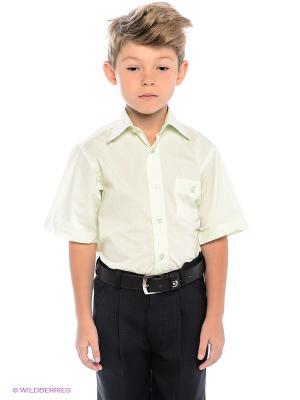 Рубашка Avanti Piccolo. Цвет: светло-зеленый