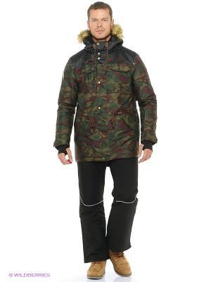 Куртка Stayer. Цвет: зеленый, темно-зеленый, хаки, коричневый, черный