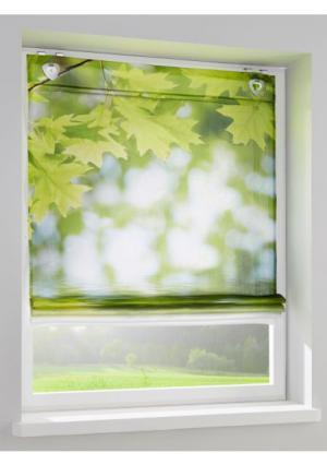 Римская штора Heine Home. Цвет: зеленый/белый