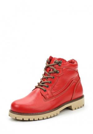 Ботинки Destra. Цвет: красный