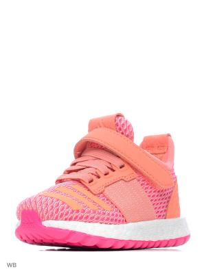 Кроссовки Pure Boost ZG Shoes Adidas. Цвет: коралловый, розовый