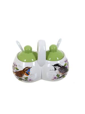 Набор банок для специй Birds, Polystar. Цвет: светло-зеленый