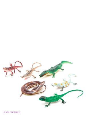 Набор рептилий, 6 шт. в пакете Globo. Цвет: зеленый, оранжевый