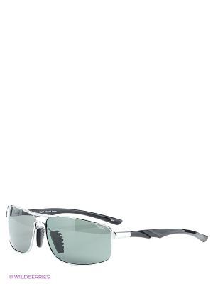 Солнцезащитные очки Legna. Цвет: черный, серебристый