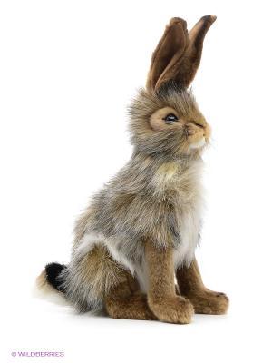Чернохвостый заяц, 23 см Hansa. Цвет: коричневый, серый