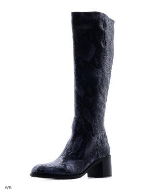 Сапоги Enzo Logana. Цвет: черный, синий