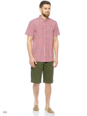 Рубашка Modis. Цвет: красный, белый