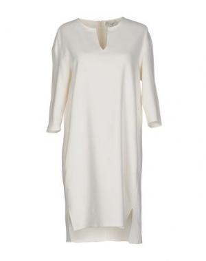 Короткое платье ANTONELLI. Цвет: слоновая кость