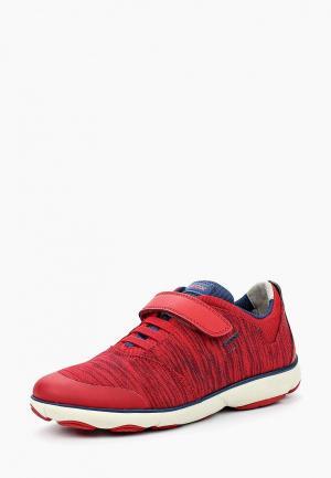 Кроссовки Geox. Цвет: красный